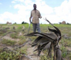 zimbabwe-drought-el-nino