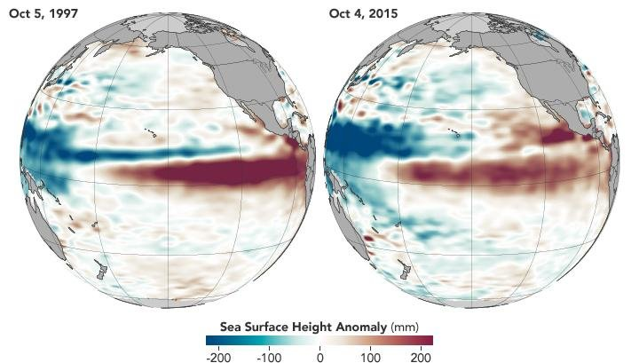 This is a comparison of the 2015 and 1997 El Niños, two of the strongest on record, in October of each respective year. Observations of sea surface heights and temperatures, as well as wind patterns, show surface waters cooling off in the Western Pacific and warming significantly in the tropical Eastern Pacific. Credit: NASA's Earth Observatory.